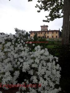 Villa Medicea della Petraia. Sono 14 le ville candidate ad ottenere il riconoscimento Unesco