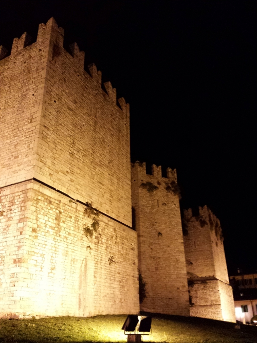 Immagine suggestiva del castello durante la notte