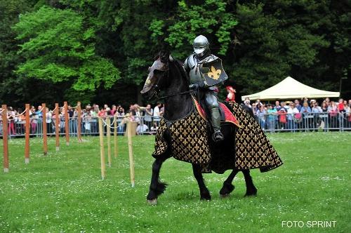 """Un Cavaliere nei Giochi di Carnasciale"""" del 2014"""