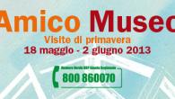 AMICO MUSEO 2013
