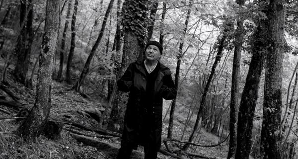 """Screenshot del Video del brano """"Come Vorrei"""" girato nelle foreste casentinesi"""